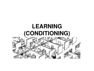 LEARNING (CONDITIONING)