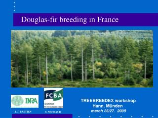 Douglas-fir breeding in France