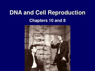 DNA and Cell Reproduction