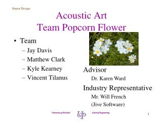 Acoustic Art  Team Popcorn Flower