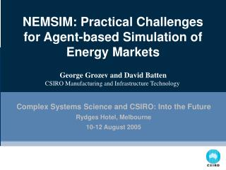 NEMSIM: Practical Challenges for Agent-based Simulation of Energy Markets