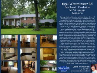 1954 Westminster Rd Sandhurst    Charleston MLS# 1414531 $430,000