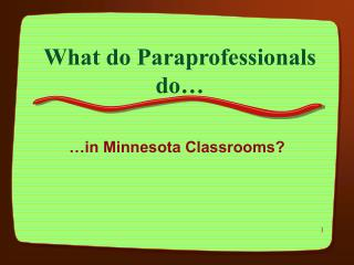 What do Paraprofessionals do