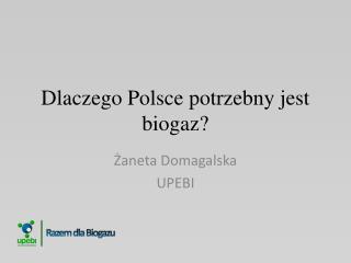 Dlaczego Polsce potrzebny jest biogaz?