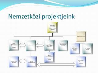 Nemzetközi projektjeink
