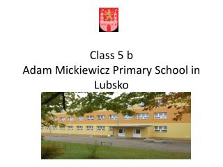 Class  5 b Adam Mickiewicz  Primary School in  Lubsko