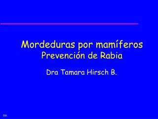 Mordeduras por mam feros Prevenci n de Rabia
