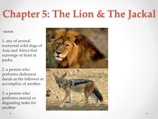 Chapter 5: The  Lion & The Jackal
