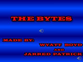 THE BYTES