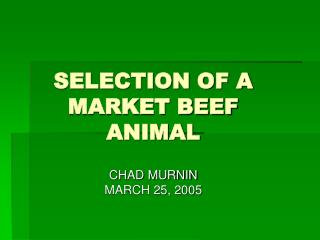SELECTION OF A MARKET BEEF ANIMAL