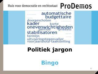 Politiek jargon Bingo