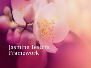 Jasmine Testing Framework
