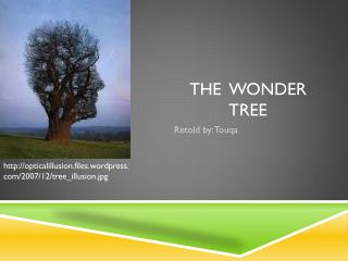 The  Wonder  T ree