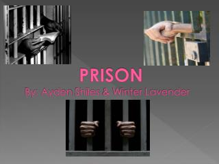 PRISON By: Ayden  Shiles  & Winter Lavender