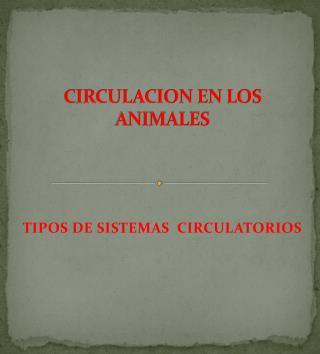 CIRCULACION EN LOS ANIMALES