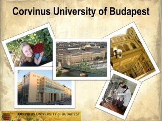 Corvinus University of Budapest