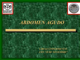 20090511 abdomen agudo