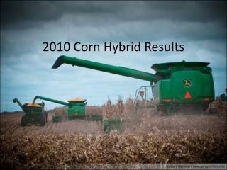 2010 Corn Hybrid Results