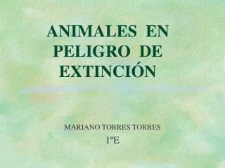 ANIMALES  EN       PELIGRO  DE  EXTINCI�N