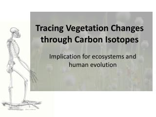 Tracing Vegetation Changes through Carbon Isotopes