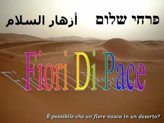 Fiori Di Pace