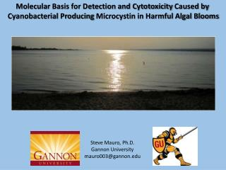 Molecular  Basis for Detection and Cytotoxicity  Caused by