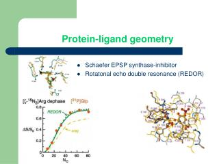 Protein-ligand geometry