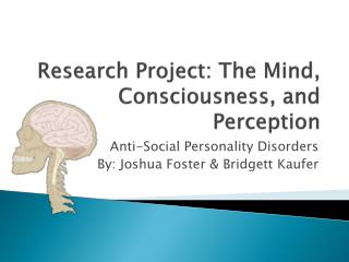 Research Project: The Mind, Consciousness, and Perception
