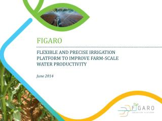 FLEXIBLE AND PRECISE IRRIGATION PLATFORM TO IMPROVE FARM-SCALE  WATER PRODUCTIVITY