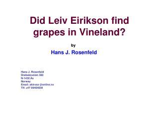 Did Leiv Eirikson find grapes in Vineland?