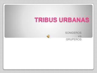 TRIBUS URBANAS