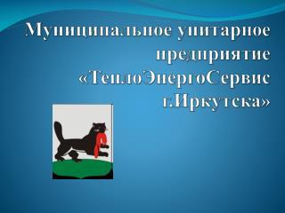 Муниципальное унитарное предприятие  «ТеплоЭнергоСервис г.Иркутска»