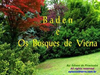 Encravada em meio aos Bosques de Viena, Baden é toda um imenso jardim...