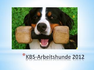 KBS-Arbeitshunde 2012
