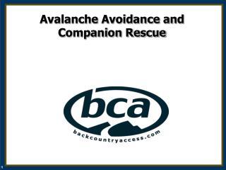 Avalanche Avoidance and  Companion Rescue