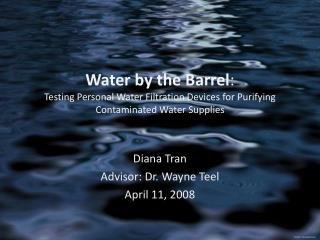 Diana Tran Advisor: Dr. Wayne Teel April 11, 2008