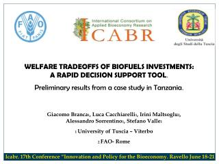 WELFARE TRADEOFFS OF BIOFUELS INVESTMENTS:    A RAPID DECISION SUPPORT TOOL .
