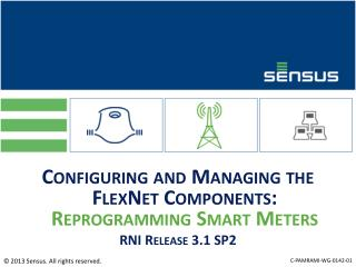 Configuring and Managing the  FlexNet Components:  Reprogramming Smart Meters RNI Release 3.1 SP2