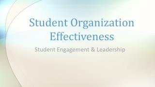 Student Organization Effectiveness
