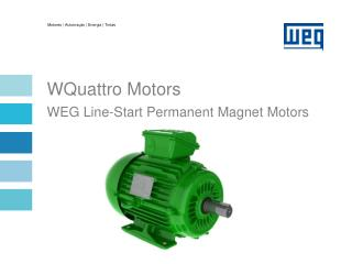 WQuattro Motors WEG Line-Start Permanent Magnet Motors