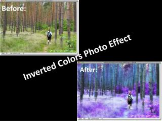 Inverted Colors Photo Effect