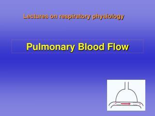 Pulmonary Blood Flow