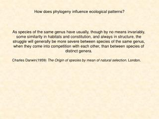 How does phylogeny influence ecological patterns?