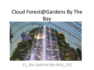 Cloud  Forest@Gardens  By The Bay