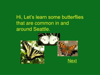 Hi, Let's learn some butterflies that are common in and around Seattle.
