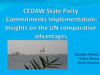 CEDAW State Party  Commitments Implementation: Insights on the UN comparative advantages