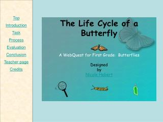The Life Cycle of a Butterfly A WebQuest for First Grade:  Butterflies Designed by Nicole Hebert