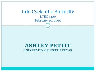 Life Cycle of a Butterfly LTEC 4100 February 20, 2010