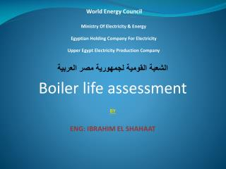 World Energy Council   Ministry Of Electricity  Energy  Egyptian Holding Company For Electricity  Upper Egypt Electricit