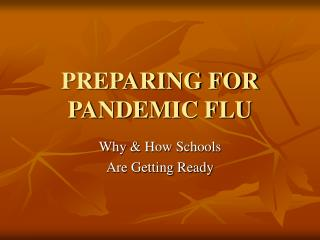PREPARING FOR PANDEMIC FLU